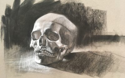 Human Skull Study Demo